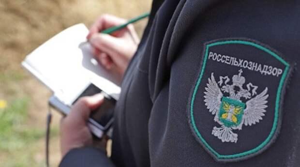 Россия запретила ввоз сотен тонн сельхозпродукции из Казахстана