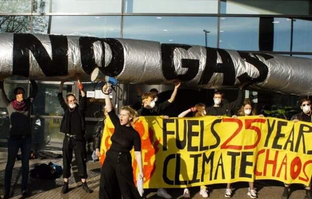 Немецкие экологи несогласны срешением суда по«Северному потоку— 2»