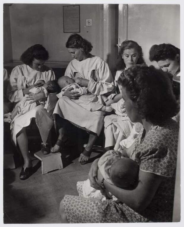 Женщины, кормящие грудью на текстильной фабрике под Будапештом, Венгрия, 1948  история, люди, фото