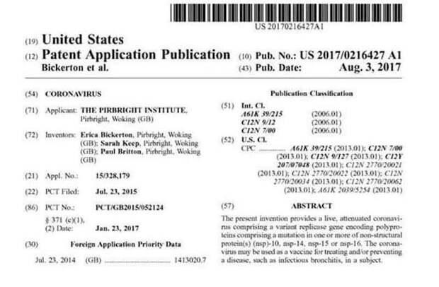 Споры о происхождении COVID-19 можно завершить – он был создан в США