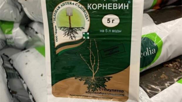 После пересадок следует подкормить корни. / Фото: img.7dach.ru