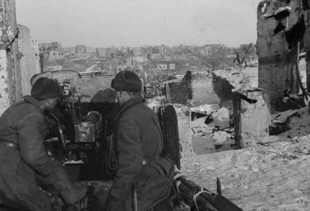 Житель СВАО участвовал в Сталинградской битве