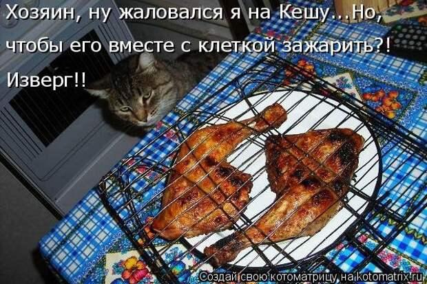 1451737540_kotomatricy-8