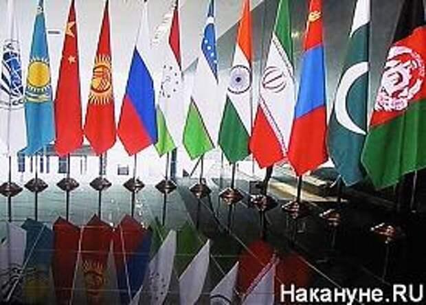 саммит шос саммит брик флаги|Фото: Накануне.RU