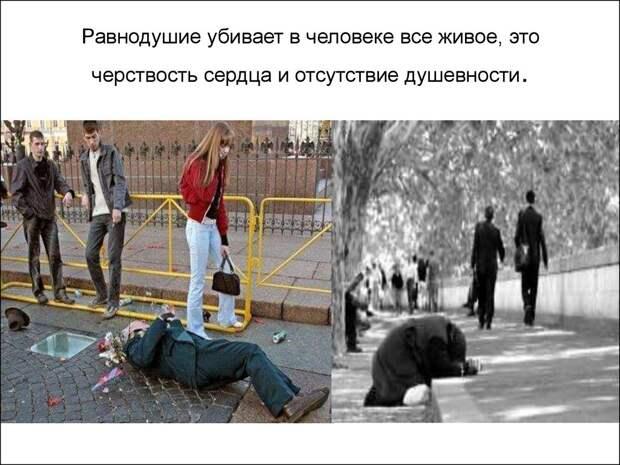 Image result for равнодушие людей