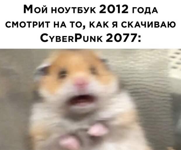 Смешные картинки 18 декабря 2020