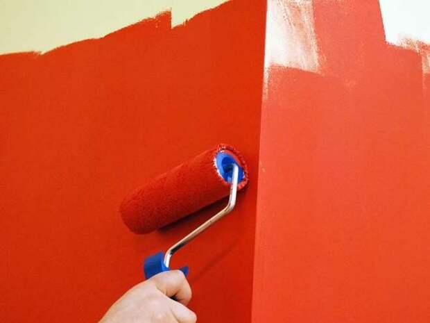 Краска для обоев – практичный способ оформить оригинальный интерьер (89 фото)