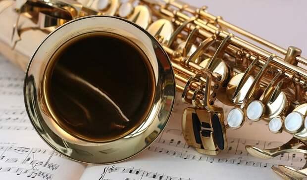 Музыкальная школа вНижнем Тагиле получила новые духовые инструменты на2,5 миллиона
