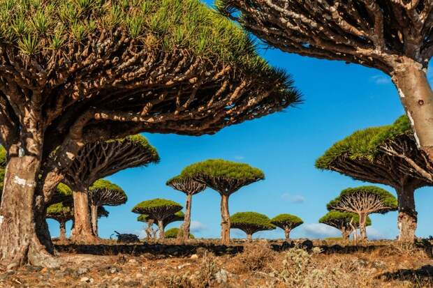 Лучший художник— природа: потрясающе красивые места вразных уголках планеты