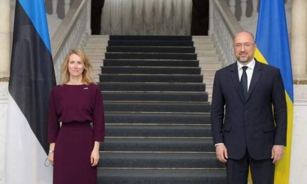 Премьер Украины Шмыгаль поблагодарил Эстонию запомощь вразмере €500000