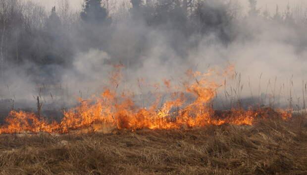 Жителей Подмосковья предупредили о высокой вероятности пожаров 5 мая
