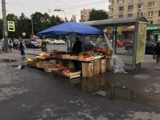 Пониделко потворствует незаконной торговле в Калининском районе – Смольный уже в курсе
