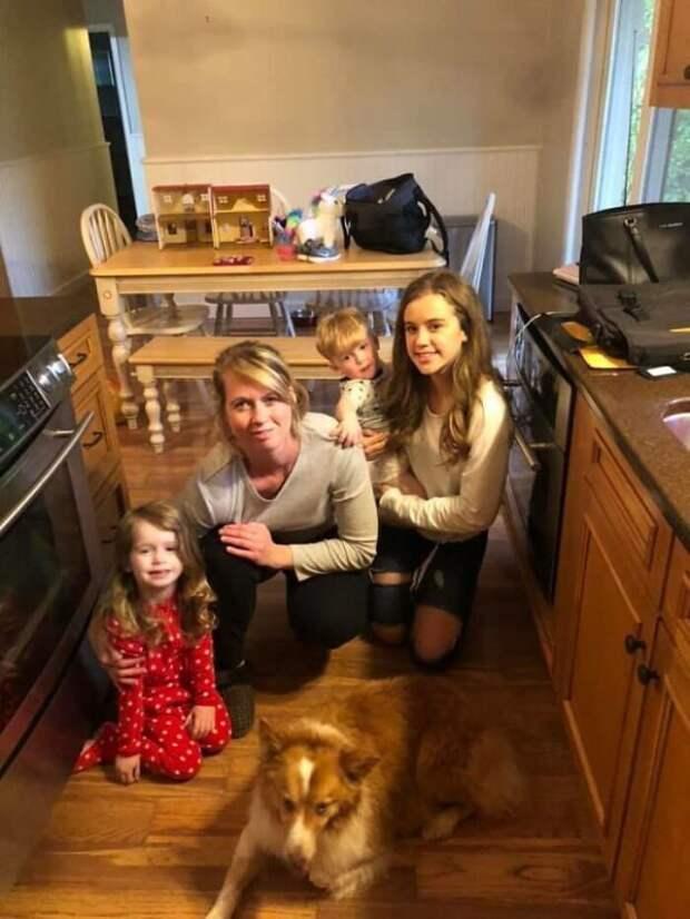 Собака, спасшая семью во время торнадо, вернулась домой через два месяца