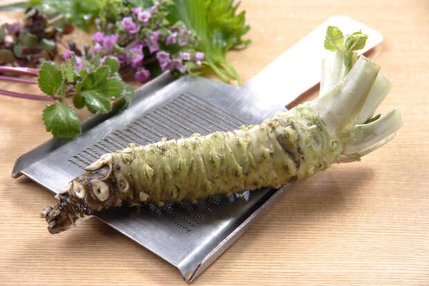 Японский хрен и другие вкусные штучки: где их найти и как приготовить