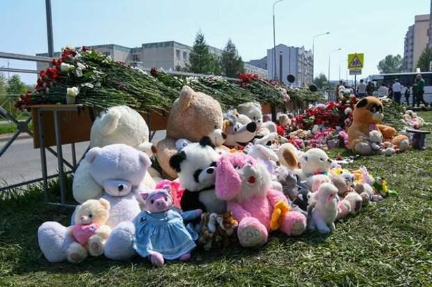 Психиатр Александр Теслер о напавшем на казанскую гимназию: «Он абсолютно неадекватен»
