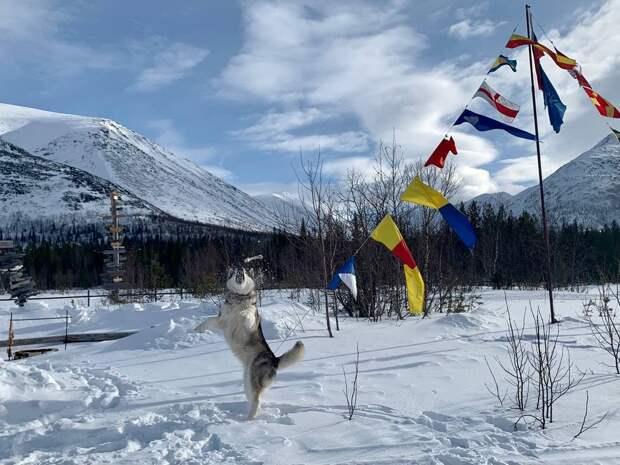 «Без снега»: к концу века Россия может остаться без зимы и озимых культур