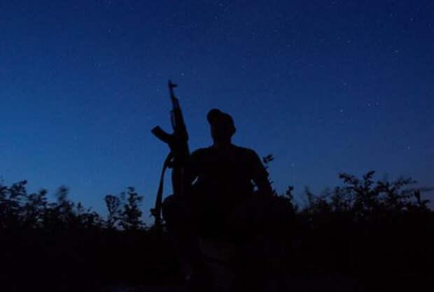 Раскрыта численность потерь украинских солдат в Донбассе