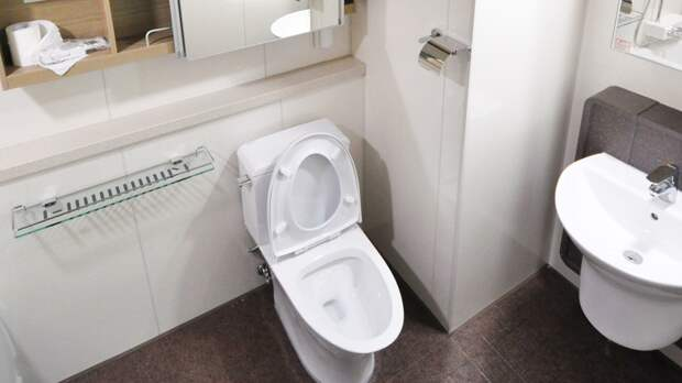 Россиянам объяснили, почему опасно брать смартфон в туалет