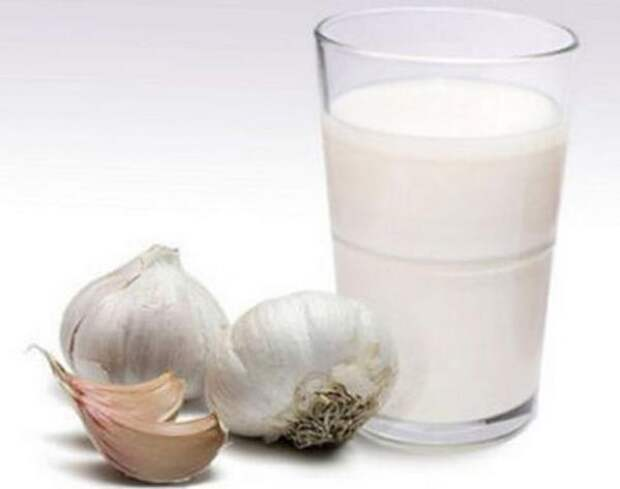 Чеснок с молоком и медом при упадке сил. Фото с сайта tvojajbolit.ru