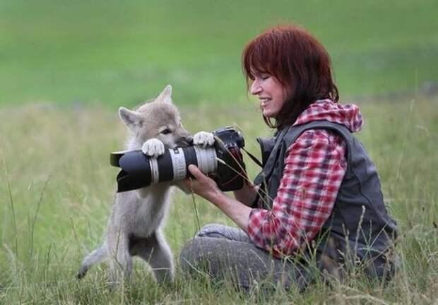15 казусов, приколов и веселых ситуаций в работе фотографа-натуралиста
