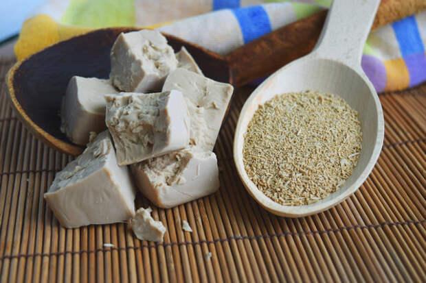 Три рецепта подкормки дрожжами