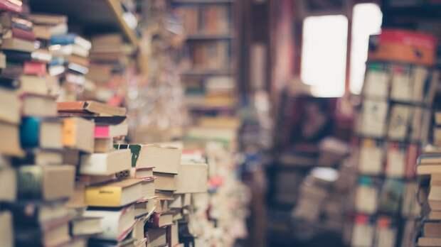 Опрос показал, сколько книг россияне прочитали за последние полгода