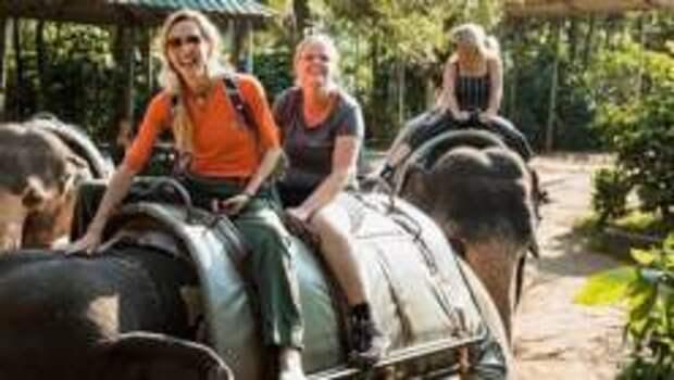 Почему никогда нельзя кататься на слонах в путешествии – Две причины