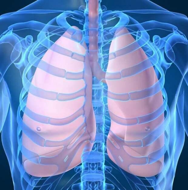 Дыхательная гимнастика, которая поможет при бронхите