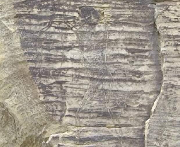 В Карачаево-Черкесии обнаружено более сотни древних наскальных изображений