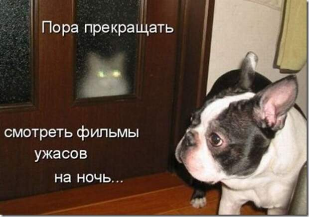 1314559963_kotomatrix_20091218_23
