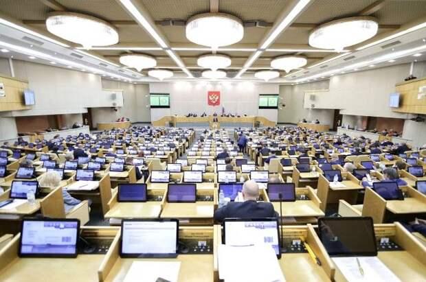 Депутаты ГД указали в декларациях свинарник, газопровод, кладовку и часовню